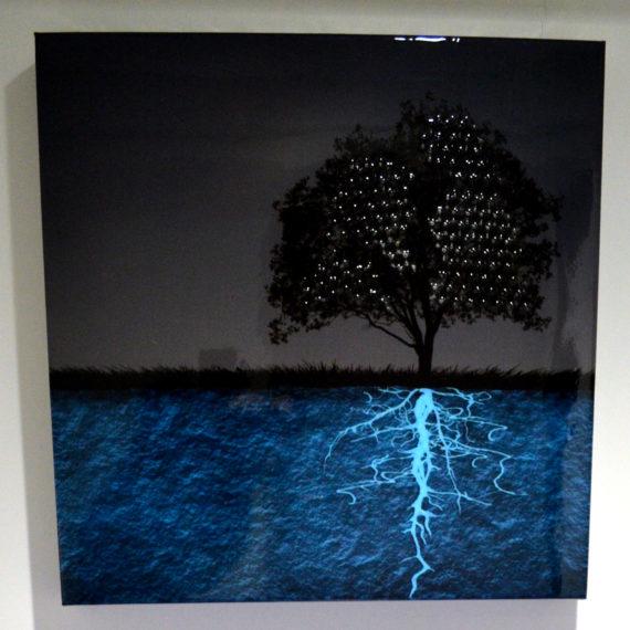 klein expose ses oeuvres chez dso mouvement com art