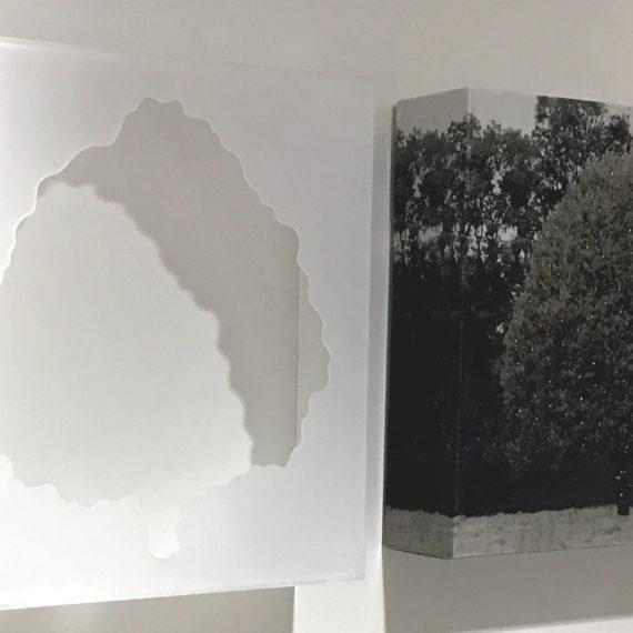 petit-gris-fonce-mouvementcom-art-galerie-nice
