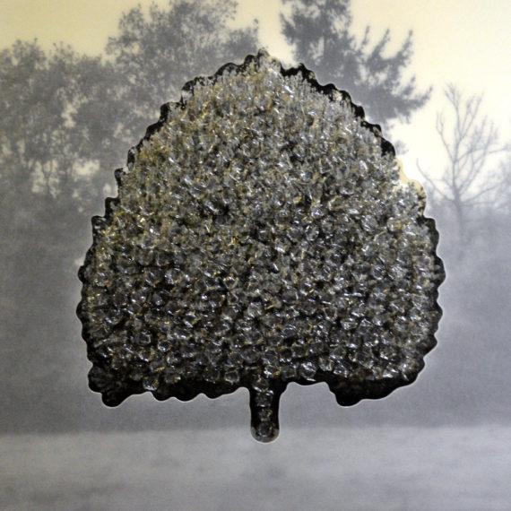 klein expose arbre noir moyen chez dso mouvement com art