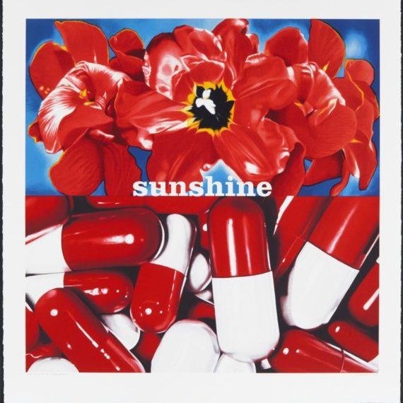 Oeuvre de Philippe Huart à nice nommée Sunshine Daydream
